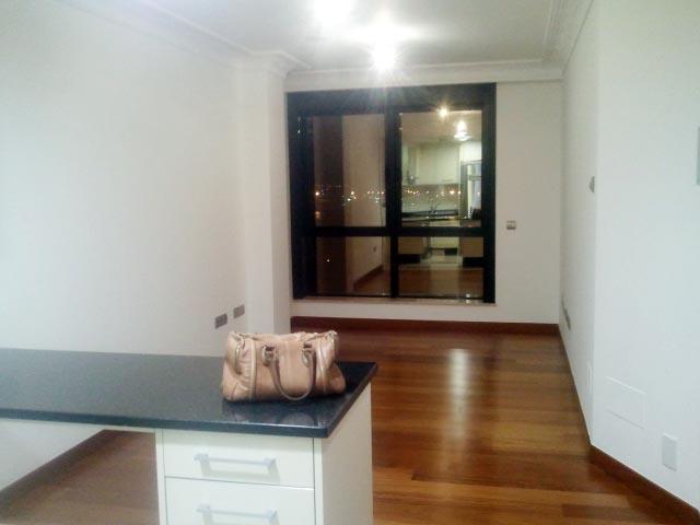 Es la única foto que tengo del apartamento nuevo. Minicocina-comedor-salón. :)