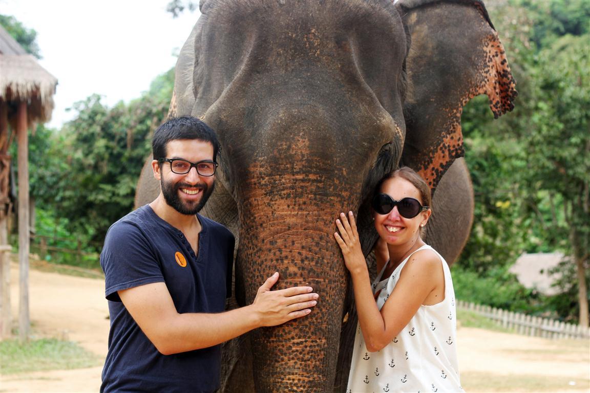 el sofa amarillo montar en elefante en laos (14)