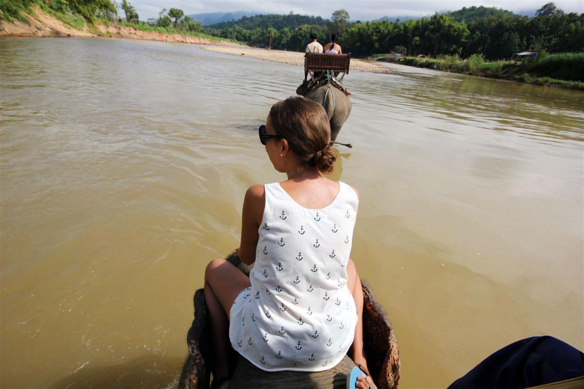 el sofa amarillo montar en elefante en laos (15)