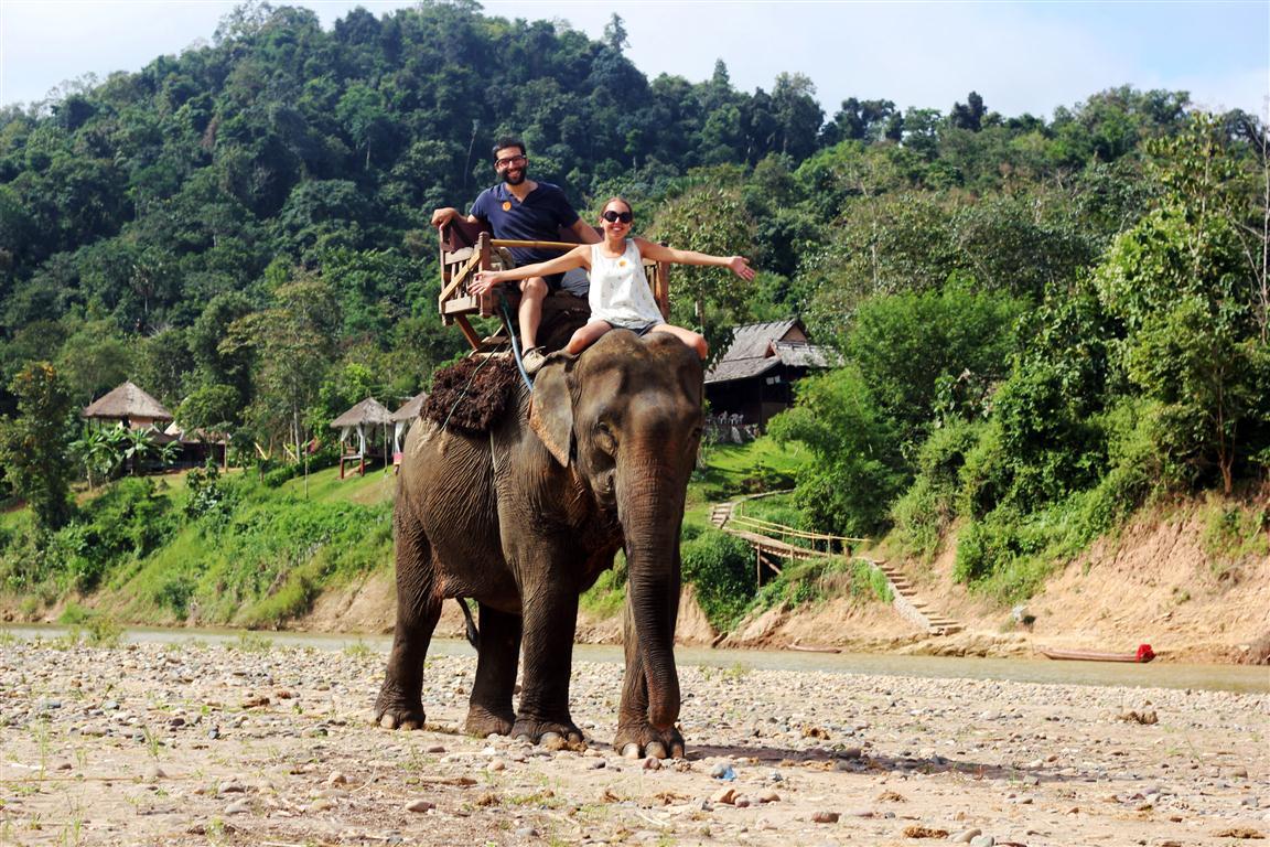 el sofa amarillo montar en elefante en laos (17)