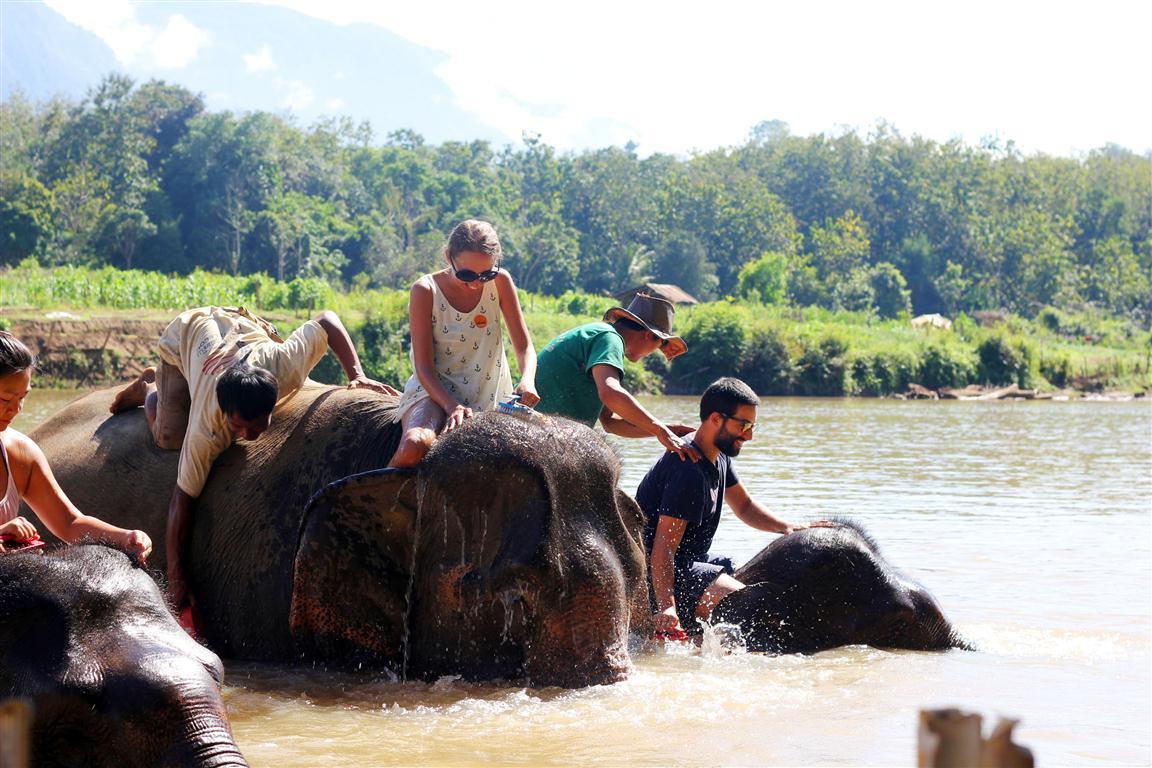el sofa amarillo montar en elefante en laos (28)