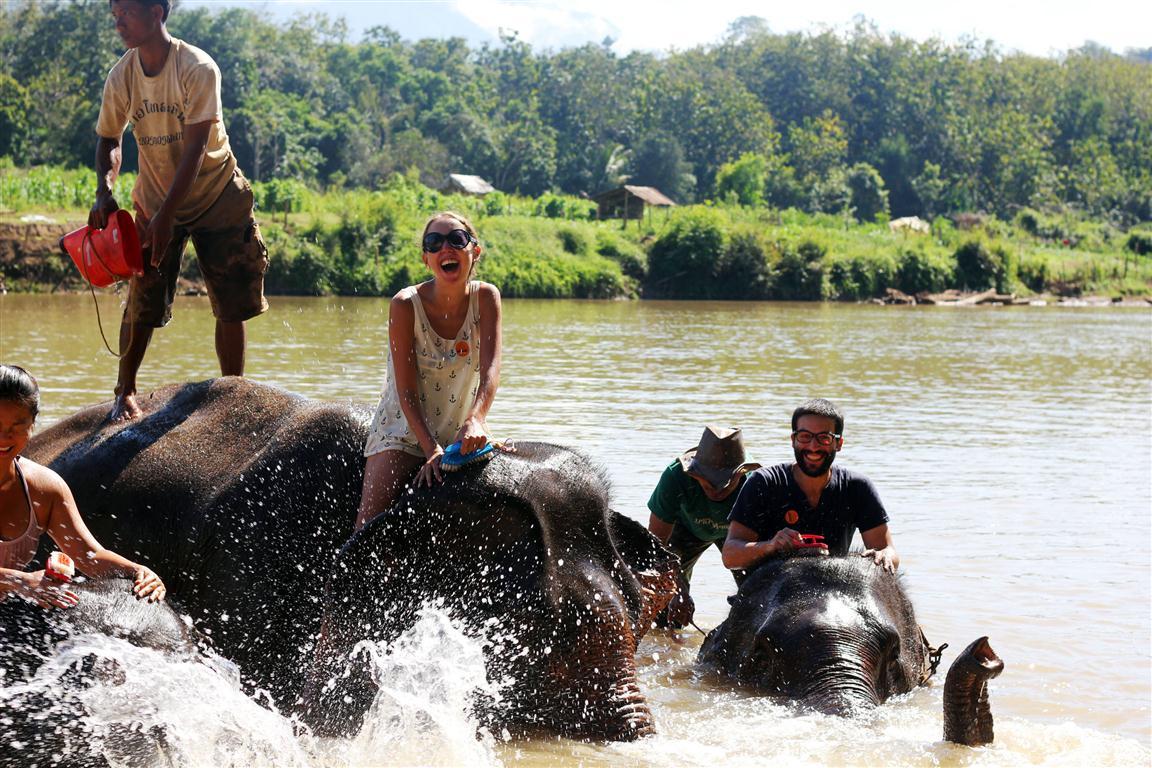 el sofa amarillo montar en elefante en laos (29)