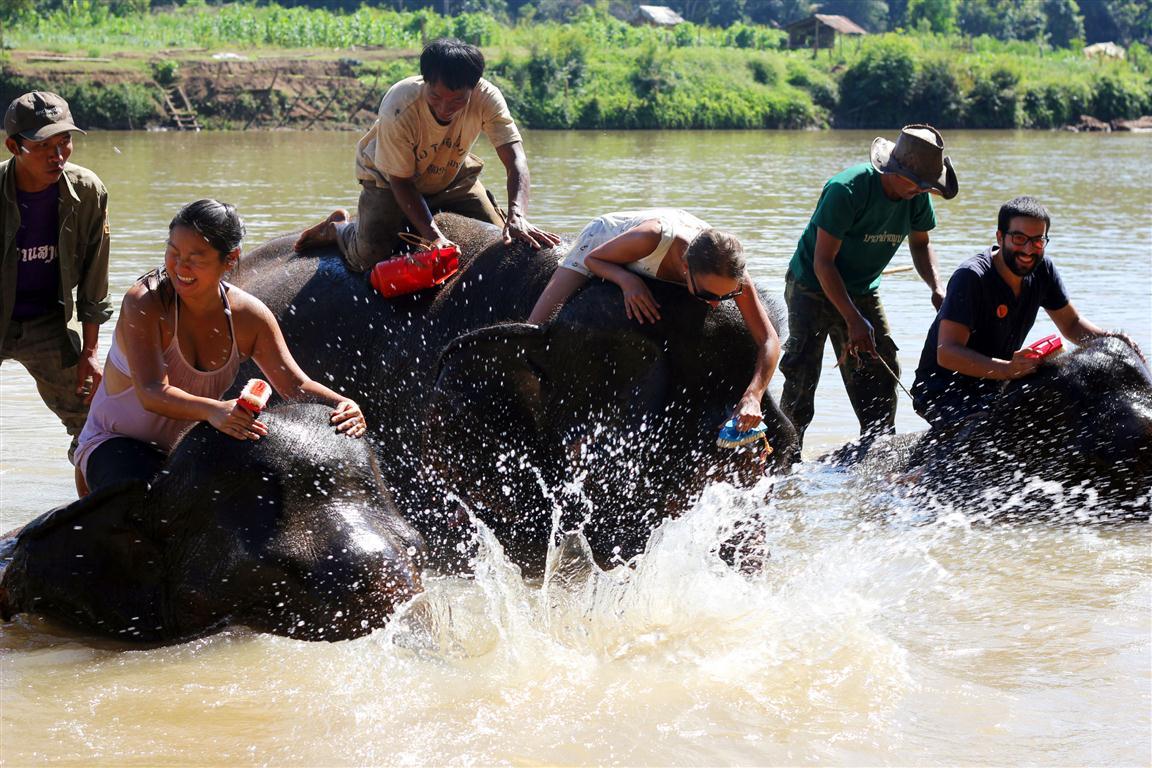 el sofa amarillo montar en elefante en laos (30)