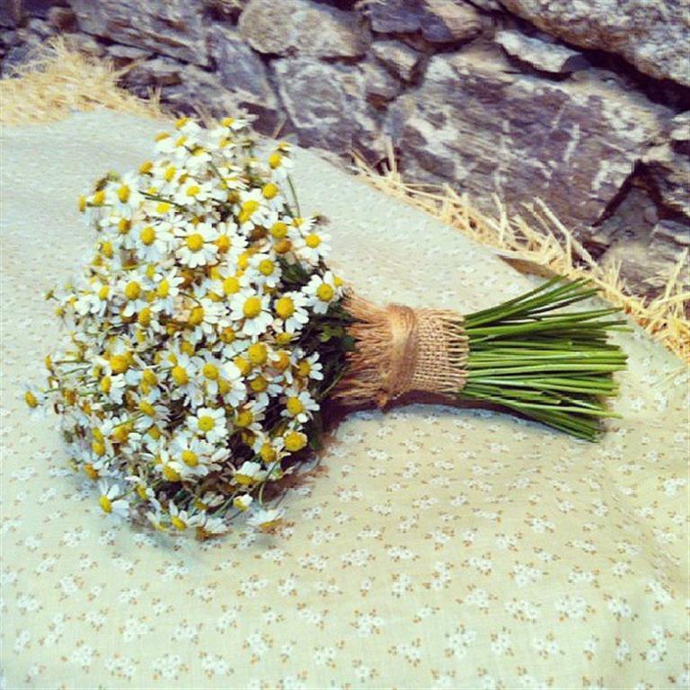 boda pazo de neda coruña el sofa amarillo (8)