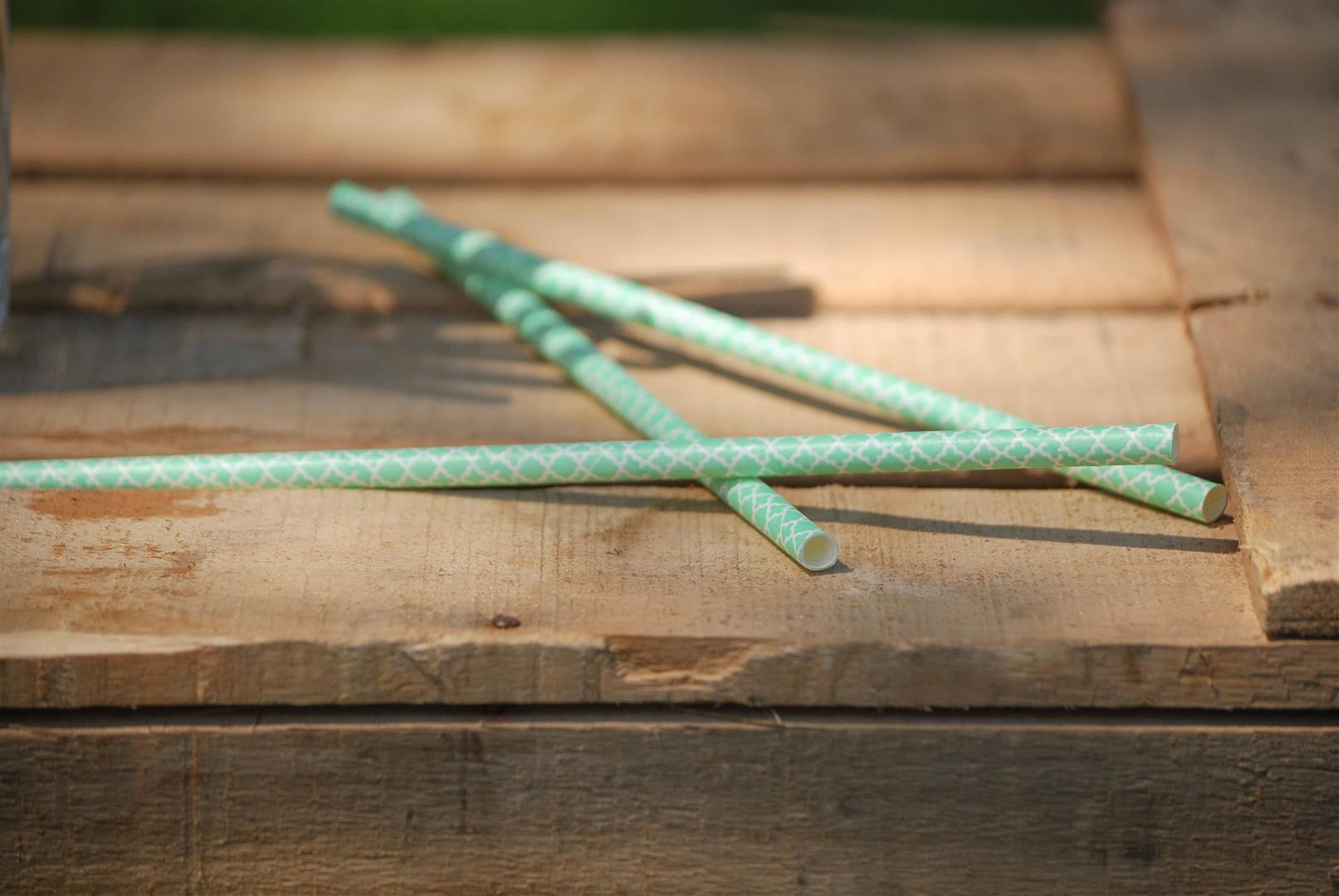 pajitas-papel-mint-turquesa (1)